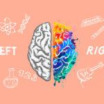 Holistic Living Through Creativity And Logic