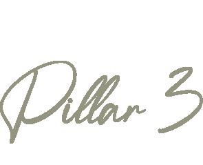 pillar3